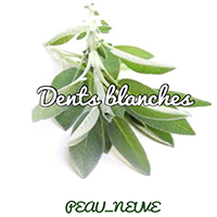 Dents blanches et feuilles de Sauge