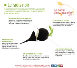 fiche-radis-noir