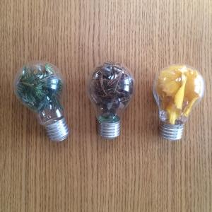 DIY ampoule