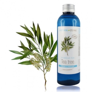 catalogue_hy_tea-tree_3