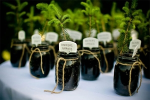 Fab-You-Bliss-Blog-Eco-Smart-Wedding-Favors-05